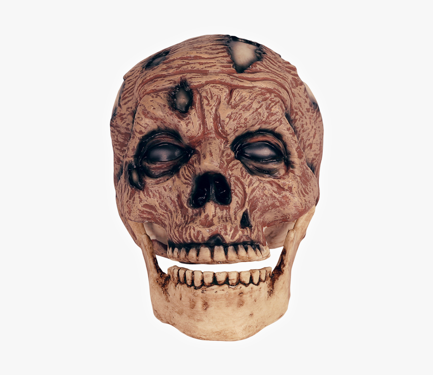 Zombie Head Png, Transparent Png, Free Download