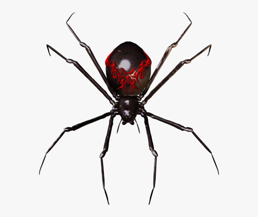 Spider Widget Clip Art Clipart Transparent Png - Black Widow Spider Transparent, Png Download, Free Download
