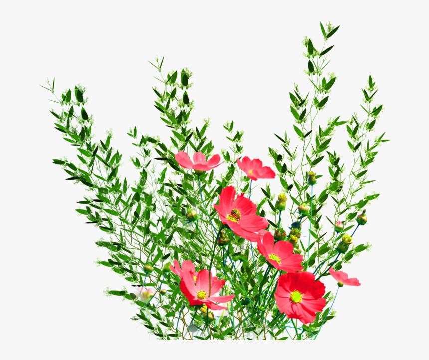 Png Garden Flowers By Kmygest-d5f8g9p - Png Format Real Flower Png, Transparent Png, Free Download