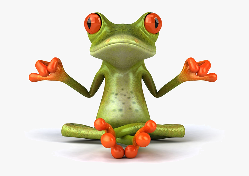 Zen Frog, HD Png Download, Free Download