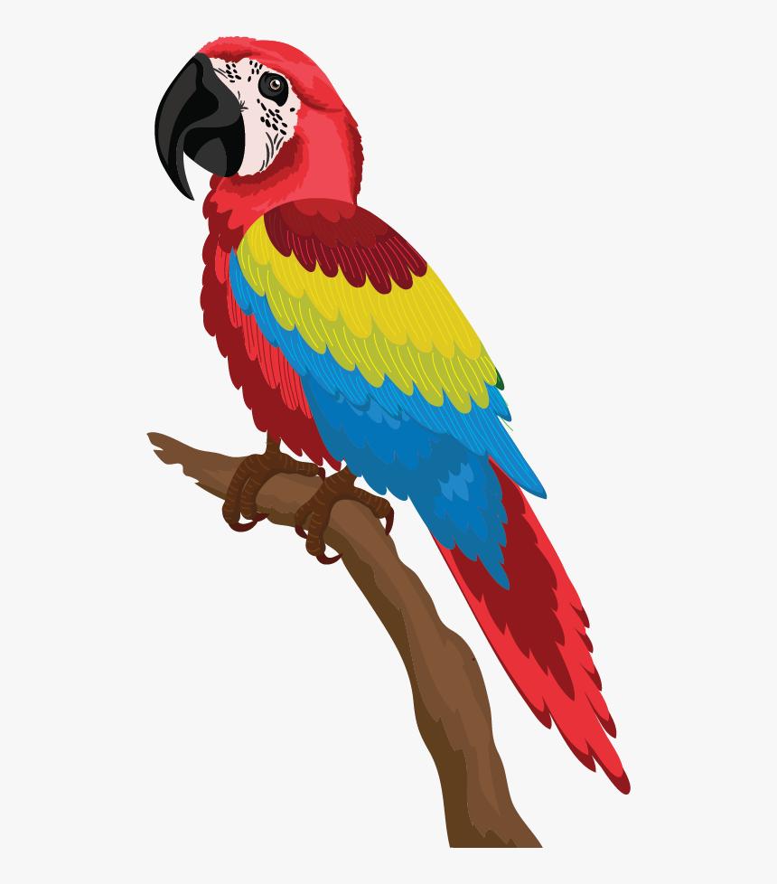 Gambar Burung Beo Kartun HD Download Kindpng