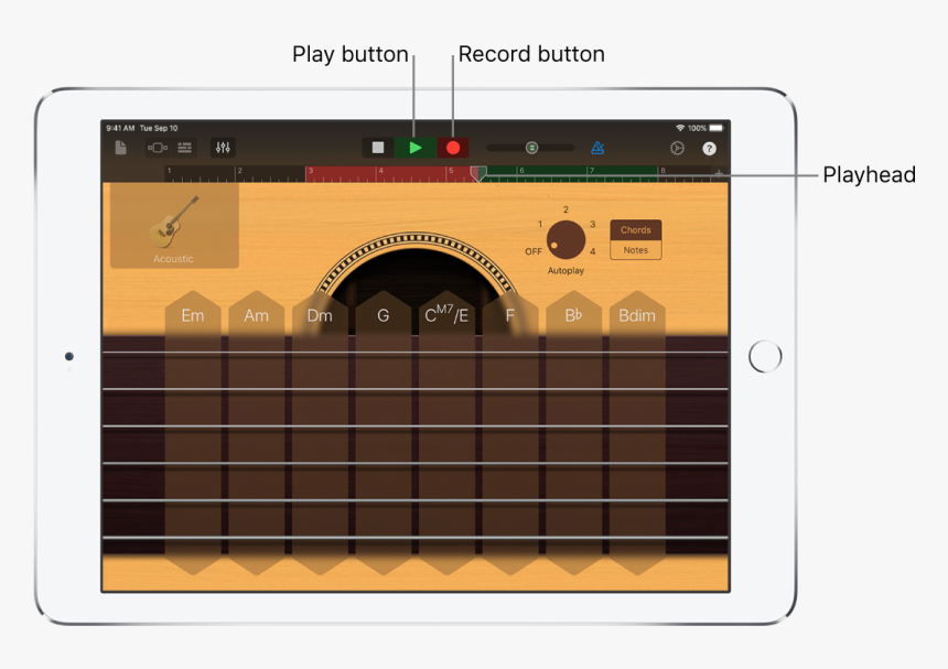 Record Button And Ruler Showing Recorded Region, HD Png Download, Free Download