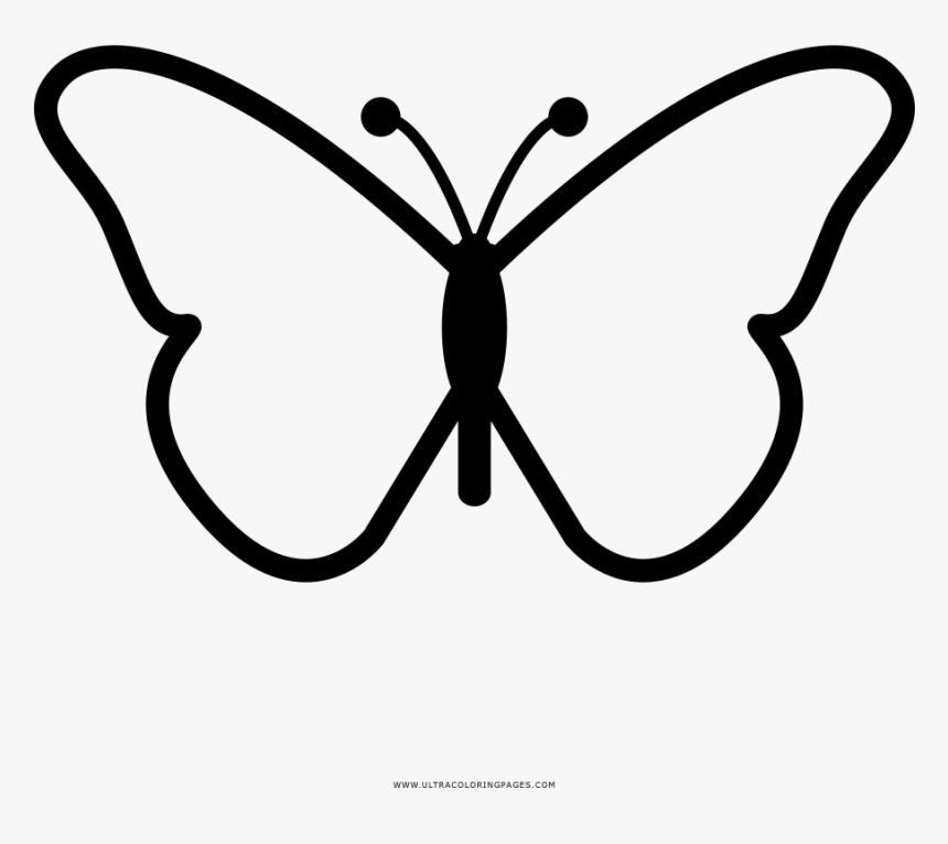 Butterfly Coloring Page Butterfly Design Drawing Easy Hd Png Download Kindpng