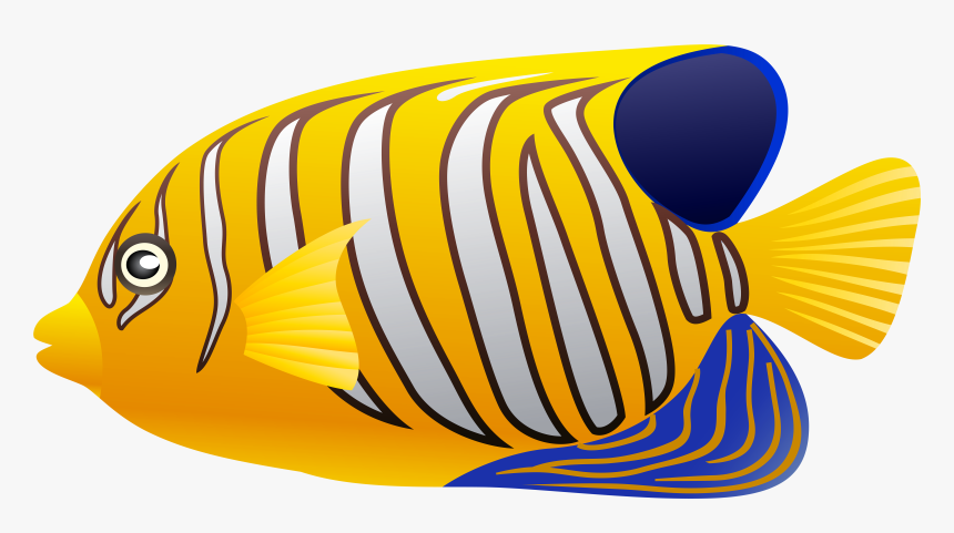Fish Cliparts Yellow - Coral Reef Fish Fish Clipart, HD Png Download, Free Download