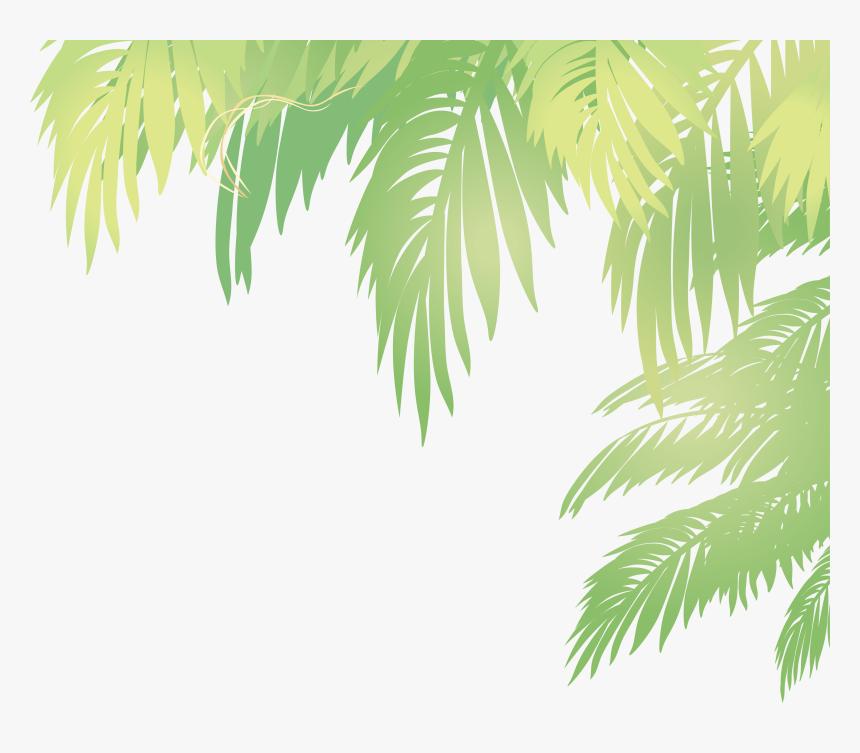 Arecaceae Leaf Euclidean Vector - Coconut Leaf Vector Png, Transparent Png, Free Download