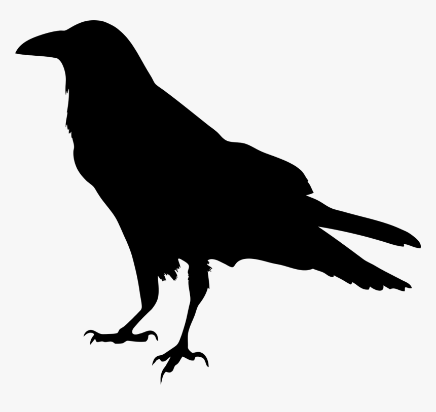 Animal Bird Black Crow Raven Silhouette Raven Transparent Hd Png Download Kindpng The best selection of royalty free crow silhouette vector art, graphics and stock illustrations. animal bird black crow raven