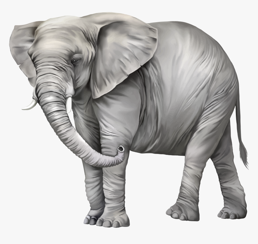 Transparent Africa Vector Png Elephant Png Clipart Png Download Kindpng The pnghut database contains over 10 million handpicked free to download transparent png images. transparent africa vector png