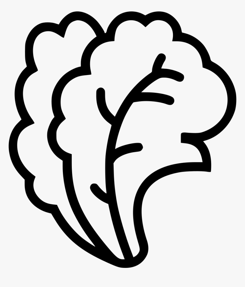 Cabbage clipart piece lettuce, Cabbage piece lettuce Transparent FREE for  download on WebStockReview 2020
