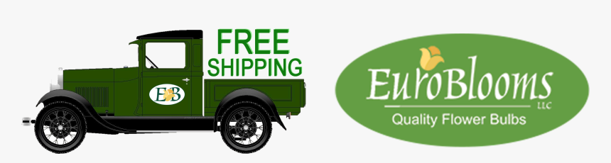 Commercial Vehicle, HD Png Download, Free Download