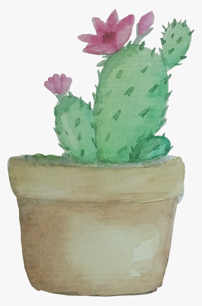 Transparent Watercolor Cactus Png - Png Transparent Cactus Png, Png Download, Free Download