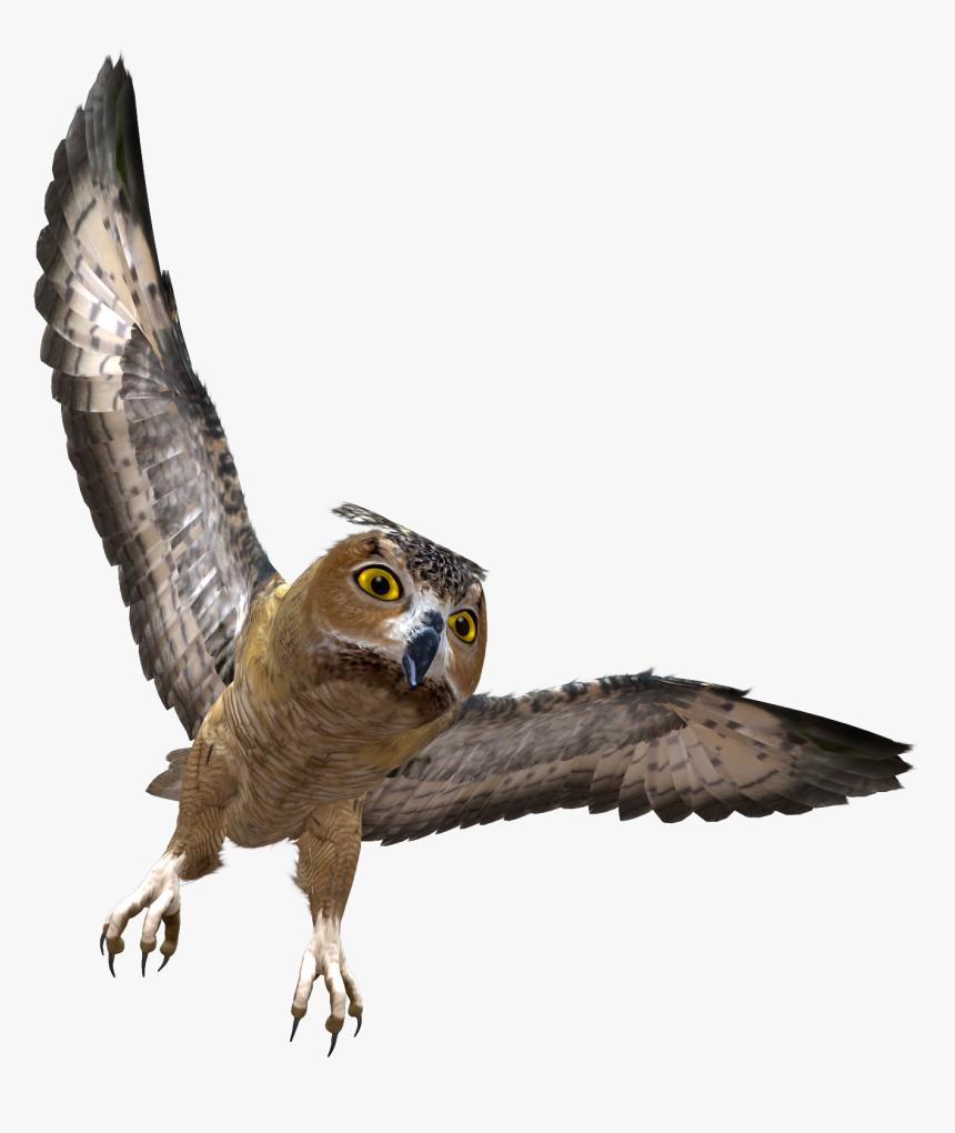 Owl Png - Owl Flying Transparent Background, Png Download, Free Download