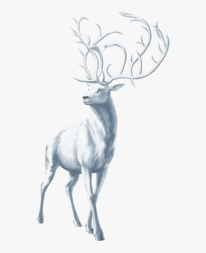 Moose Png Free Download - Elk, Transparent Png, Free Download