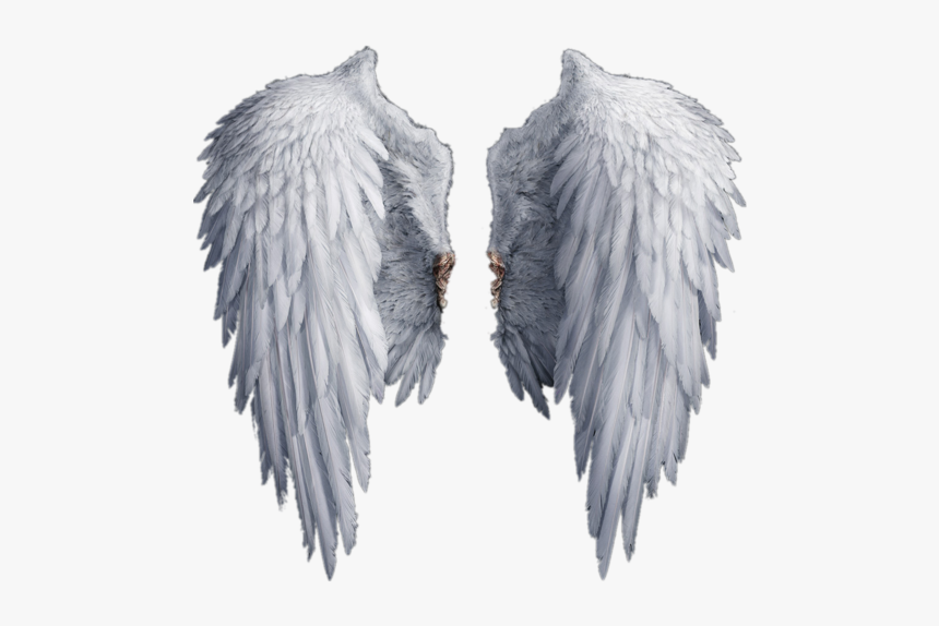 Stock Photography Drawing Clip Art - Transparent Angel Wings Png, Png Download, Free Download