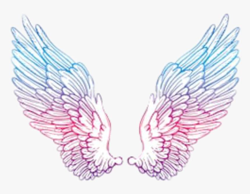 #angelwings #wings #angel #blue #pink #purple #tumblr - Pink And Blue Angel Wings, HD Png Download, Free Download