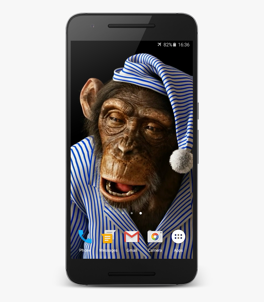 Monkey Live Wallpaper Funny Live Wallpaper For Iphone Hd Png Download Kindpng