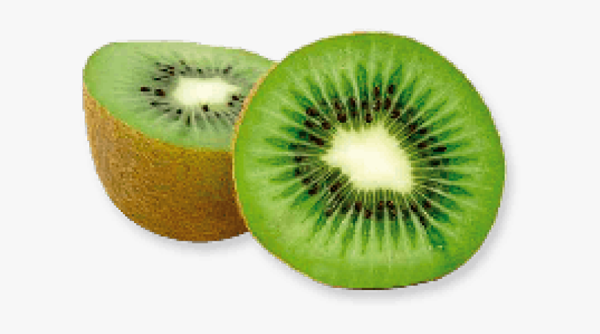 Kiwi Clipart Sliced - Kiwi Png, Transparent Png, Free Download