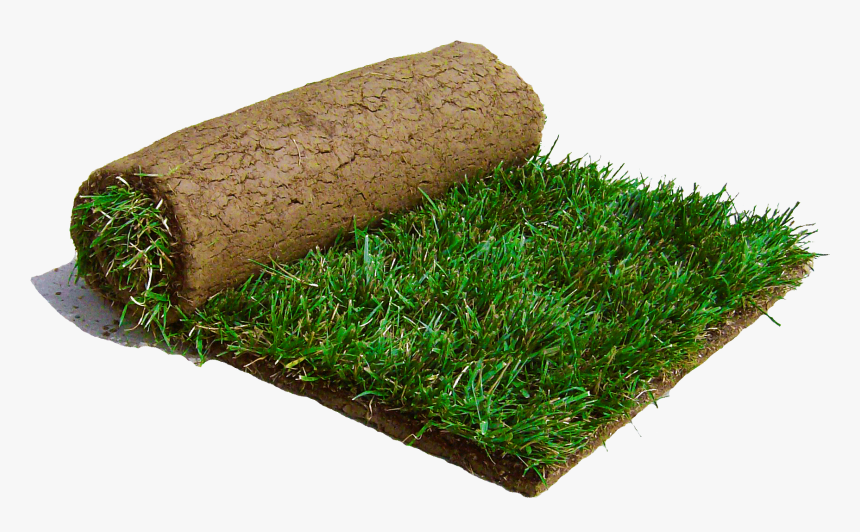 Saw A Patch Of Sod Laying On The Road - Sod Png, Transparent Png, Free Download