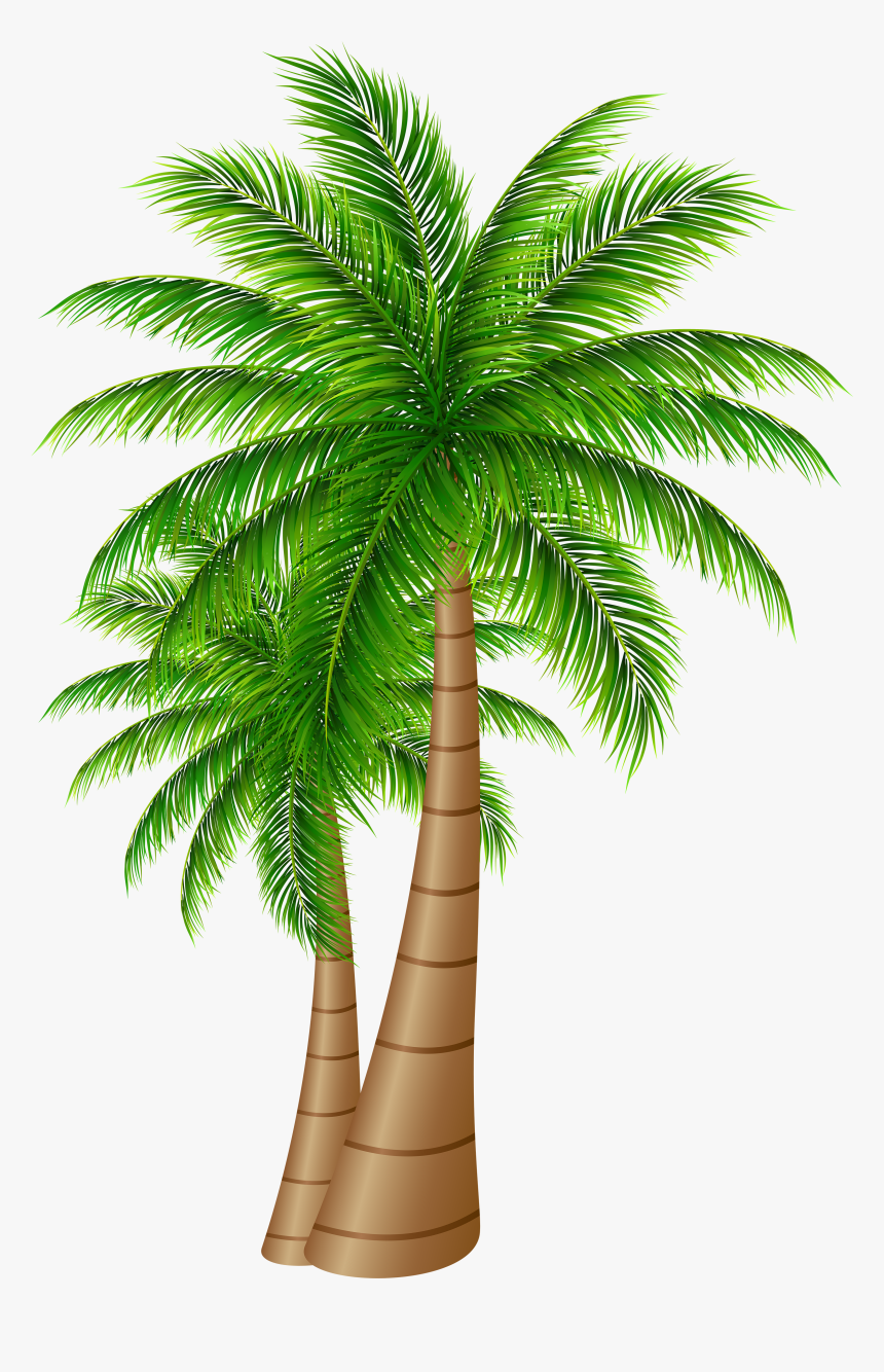 Palm Tree Clipart Transparent Png - Island With Palm Tree Clipart, Png Download, Free Download