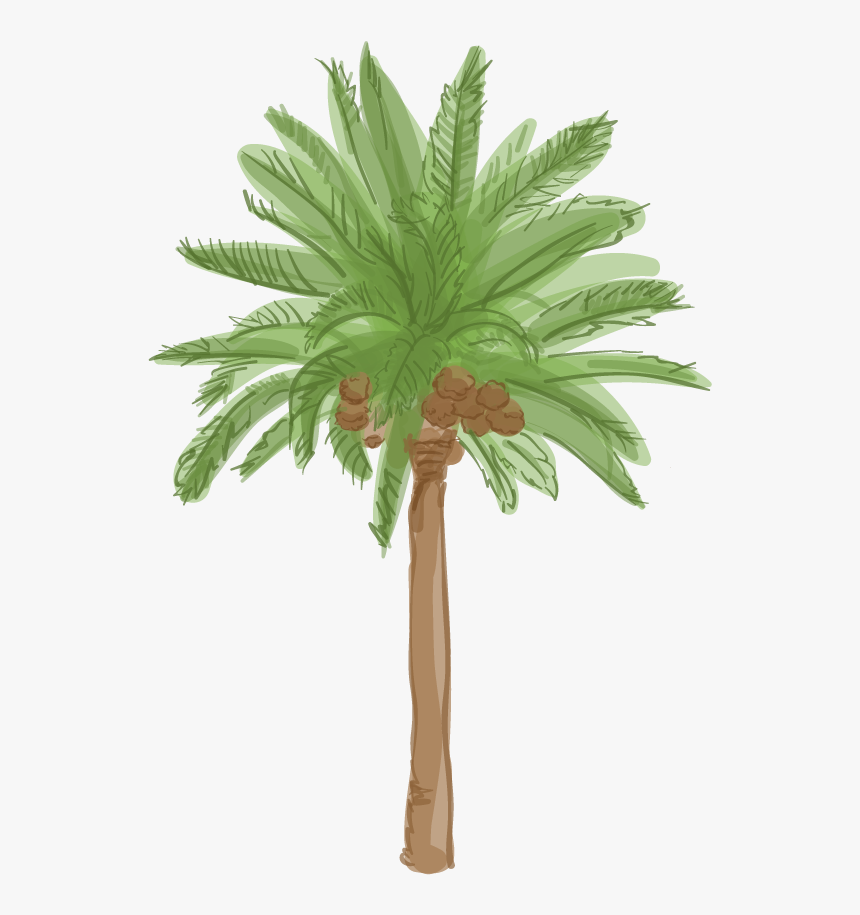 Date Palm Tree Cartoon, HD Png Download, Free Download