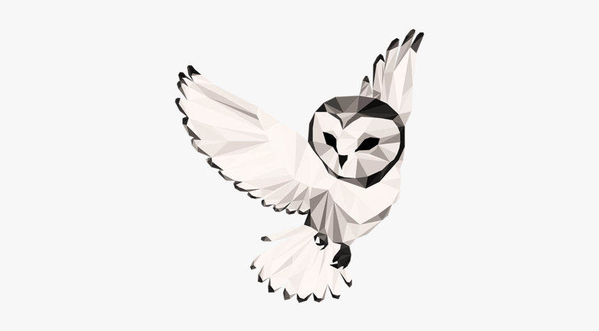 Night Owl Collective - Barn Owl, HD Png Download, Free Download