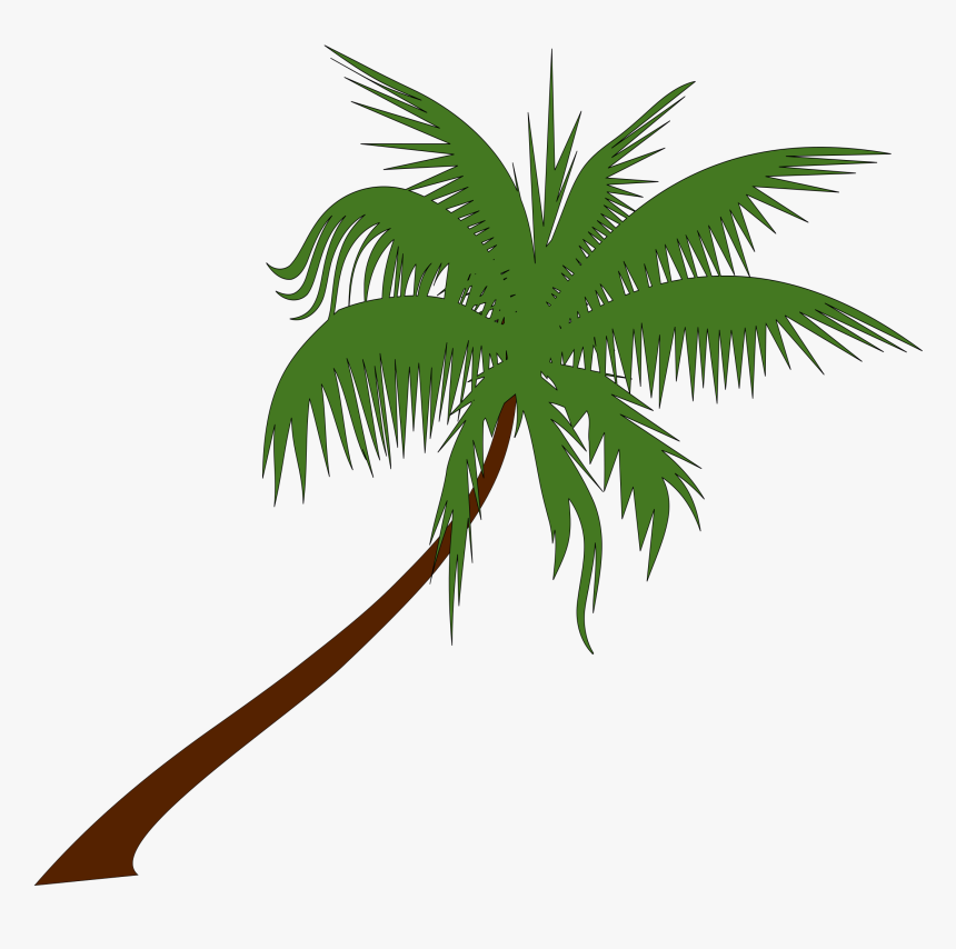 Clipart - Free Palm Tree Graphic, HD Png Download, Free Download