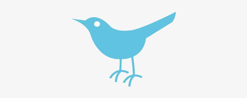 Twitter Bird Logo Transparent - Twitter Gifs Transparent Background, HD Png Download, Free Download