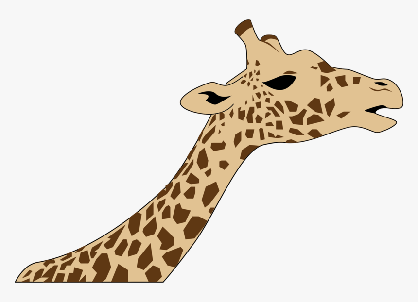 Giraffe Neck And Head Drawing, HD Png Download, Free Download