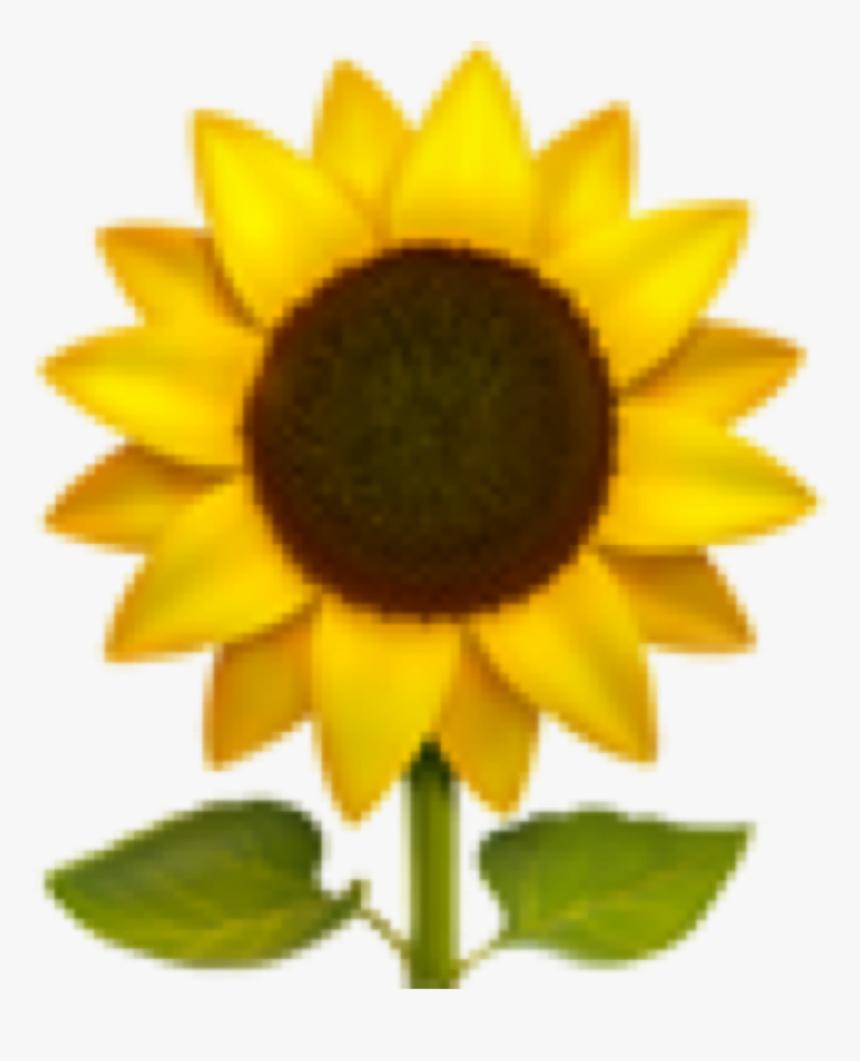 #emoji #iphone #iphoneemoji #emojis #iphoneemojis #sunflower - Sunflower Emoji Png, Transparent Png, Free Download
