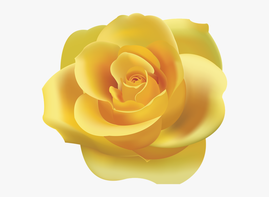 Vertical Frame With Yellow Roses. Vector Clip Art. Royalty Free Cliparts,  Vectors, And Stock Illustration. Image 60475232.