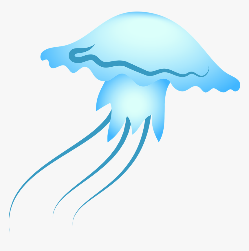 Jellyfish Sea Blue Free Photo, HD Png Download, Free Download