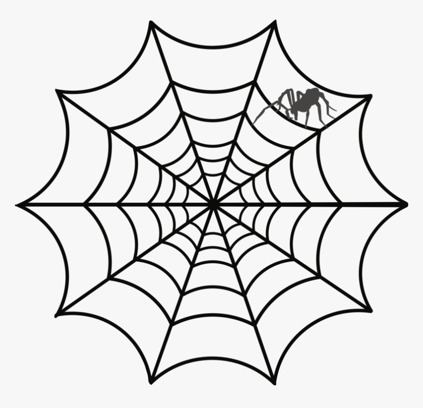Spider-web - Clip Art Of Web, HD Png Download, Free Download