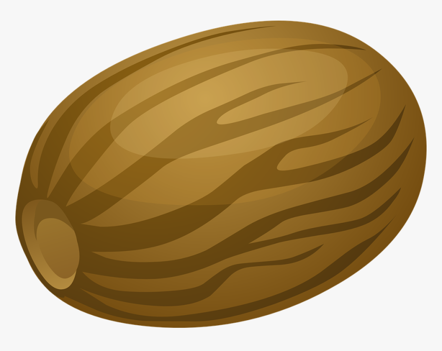Nutmeg, Nut, Shell, Brown, Food, Snack, Healthy - Nutmeg Vector Png, Transparent Png, Free Download
