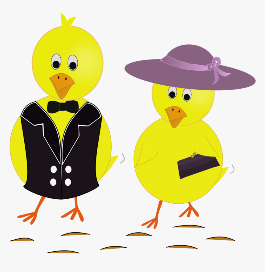 Chicks Png, Transparent Png, Free Download
