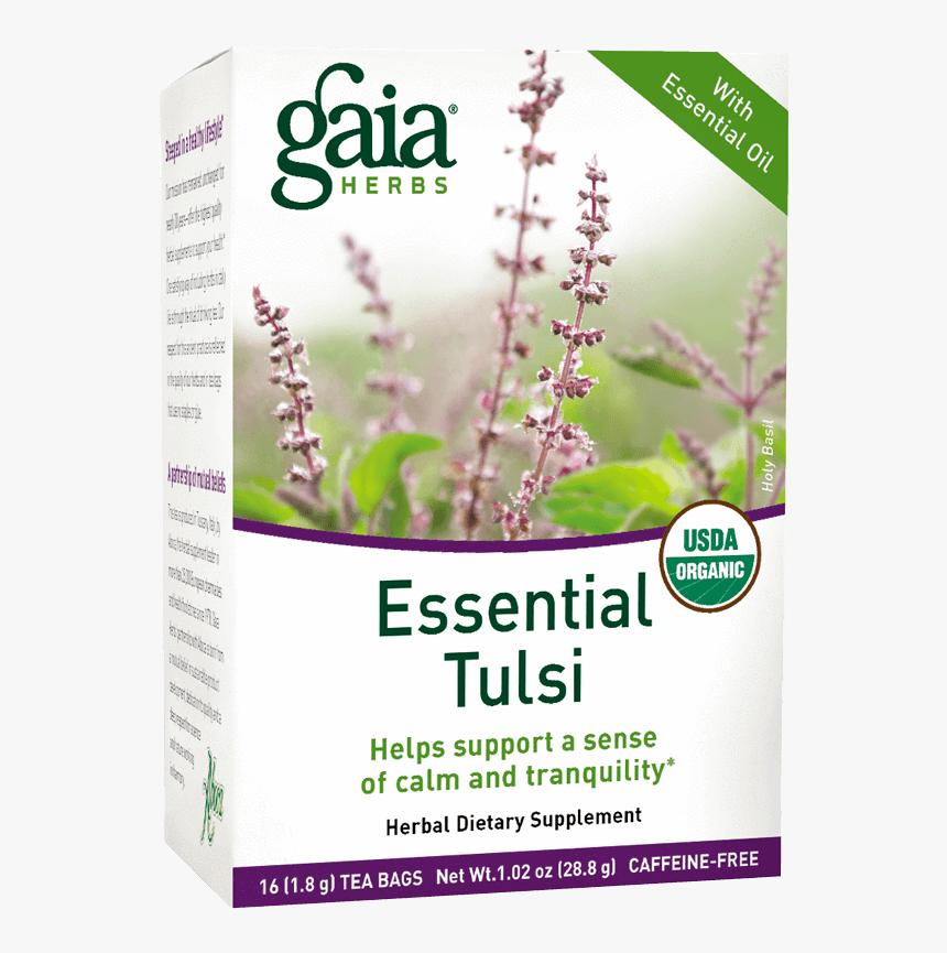 Tulsi Tree Png, Transparent Png, Free Download