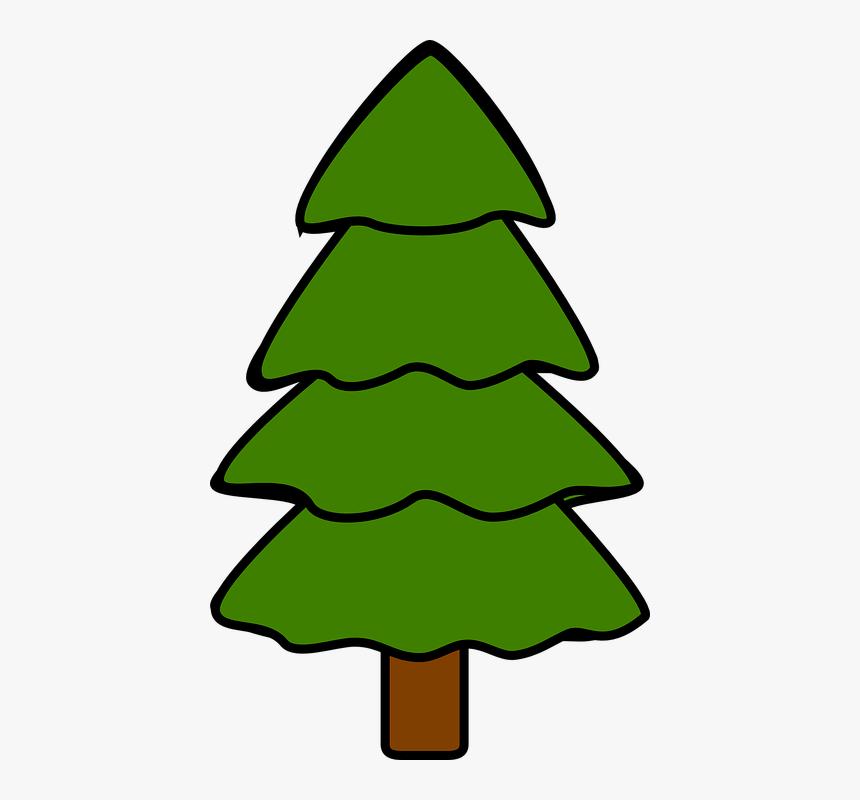 Pohon Pohon Cemara Pinus Cemara Alam Kayu Hd Png Download Kindpng