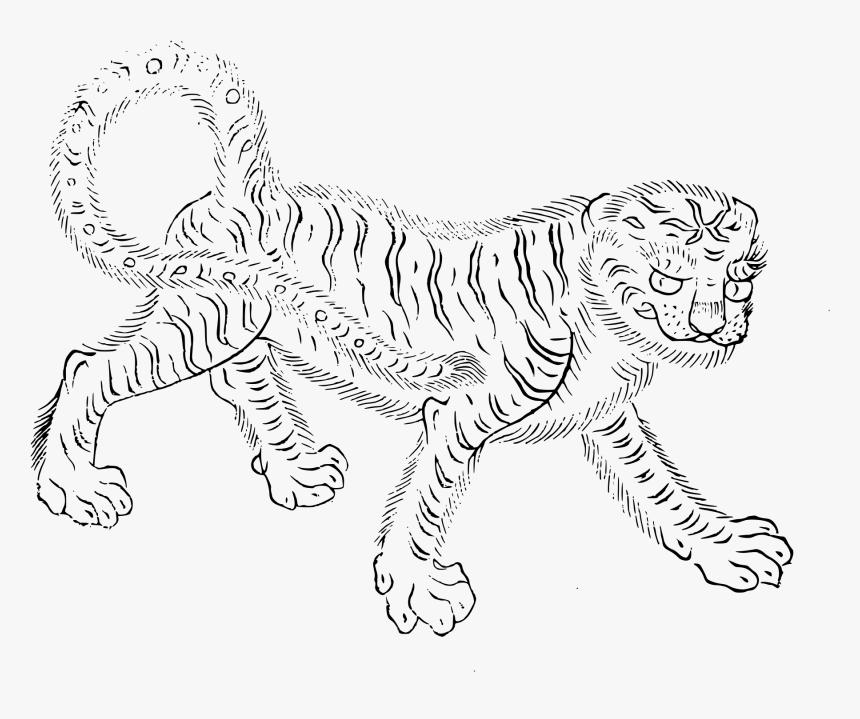 Transparent Wild Animal Png, Png Download, Free Download