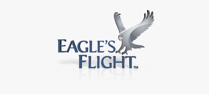 Eagle Png Hd, Transparent Png, Free Download