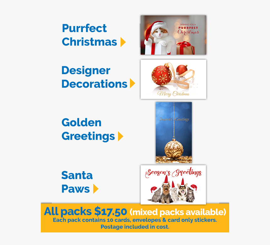 2019 Christmas Cards, HD Png Download, Free Download