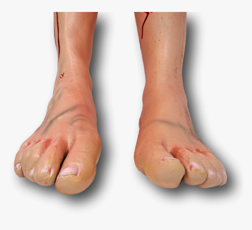 Bloody Severed Fake Latex Arm Arms Leg Legs Foot Feet, HD Png Download, Free Download