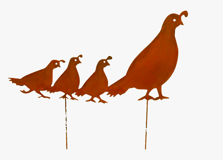 Quail Family-lrg Larger Image, HD Png Download, Free Download