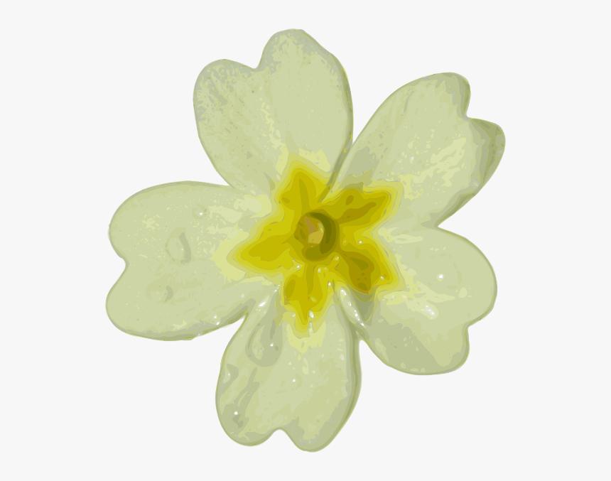 Blurred White Flower Svg Clip Arts, HD Png Download, Free Download
