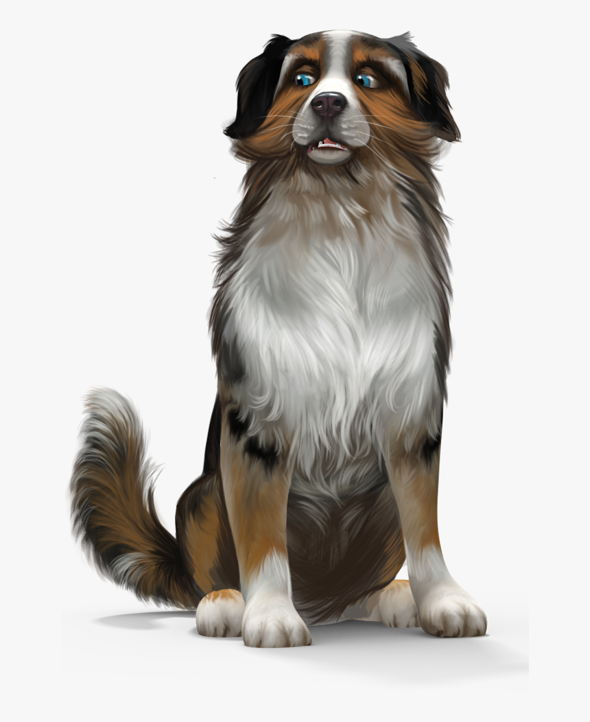As The New Head, You Take The Lead Of Your Own Dog - Rasse Australian Shepherd Hunderassen, HD Png Download, Free Download