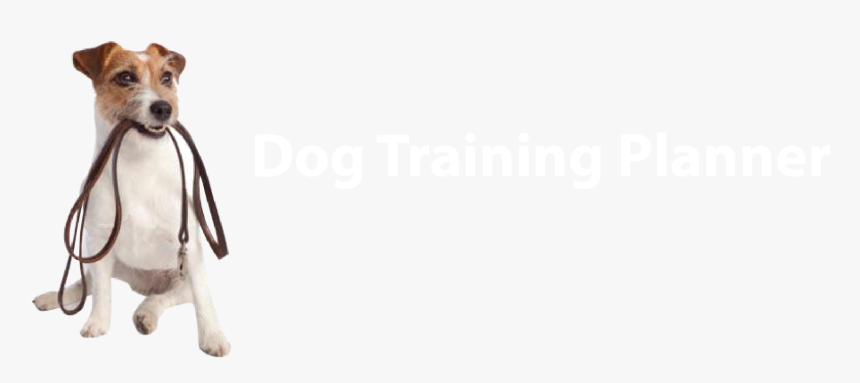 Dog Training Planner - Dogs Play Png, Transparent Png, Free Download