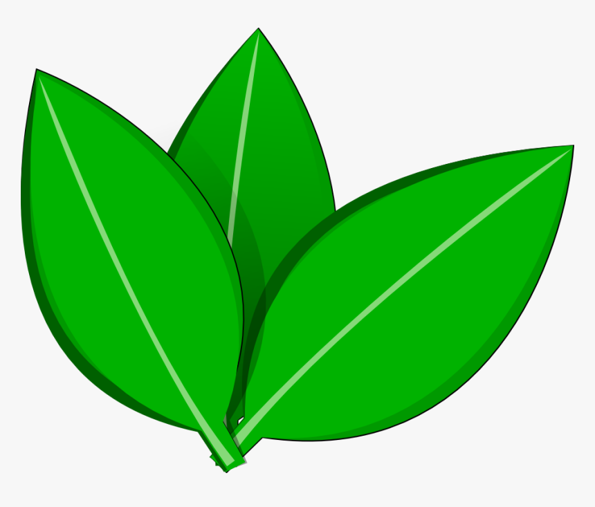 Vector Leaves Inkscape By Dyreryft On Clipart Library Leaves Transparent Vector Hd Png Download Kindpng