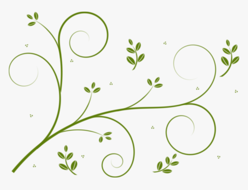 winding lines and leaves clip arts - vines clip art free, hd png download -  kindpng  kindpng