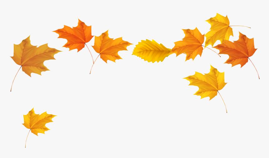 Leaf - Transparent Background Leaf Clipart Png (#370425) - PinClipart