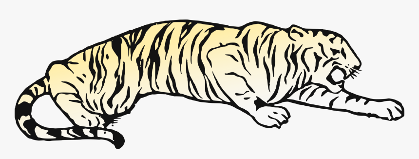 Whiskers Cat Golden Tiger Bear Bengal Tiger - Tiger Pouncing Coloring Pages, HD Png Download, Free Download