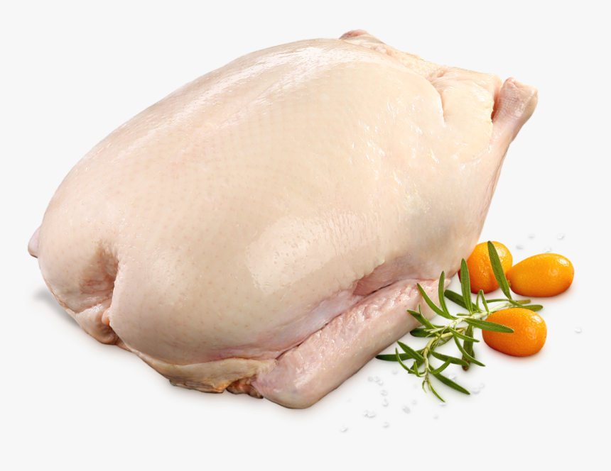 Fresh Duck Meat, HD Png Download, Free Download