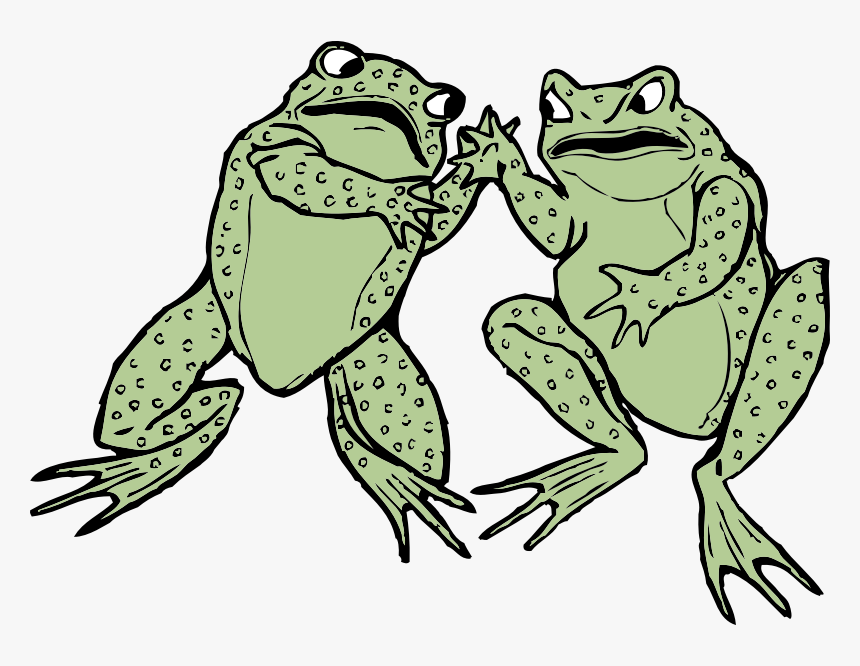 Two Frogs - Two Frog Clipart, HD Png Download, Free Download