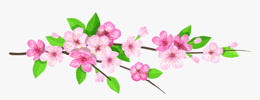 Spring Png - Flower Branch In Png, Transparent Png - kindpng